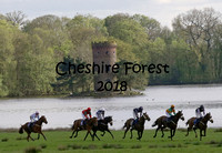 Cheshire Forest 22nd April 2018